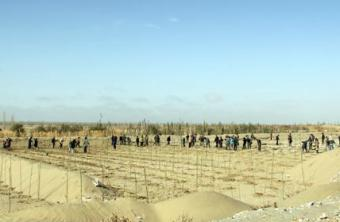 华全发电机组:新疆放大招,预将百万亩沙漠变绿洲