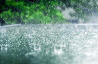 五月的雨水,洒遍潍坊,清新了一座城,清新了城里的华全