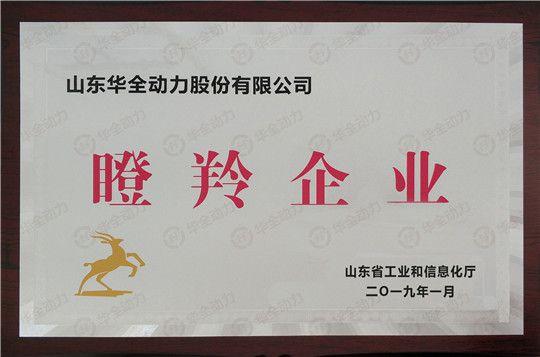 华全动力被评为山东省瞪羚企业