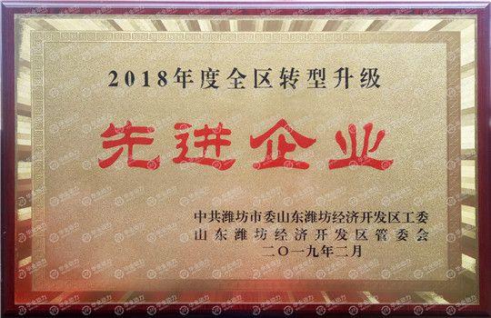 华全动力被评为潍坊2018年度全区转型升级先进企业